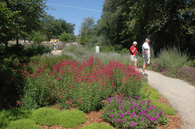 Winding paths bordered by colorful perennials invite pedestrians to explore the gardens.  Photo: courtesy of McConnell Arboretum & Gardens