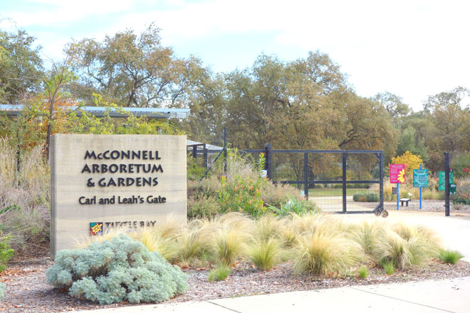 McConnell Arboretum & Gardens at Turtle Bay in Redding, California.  Photo: Daderot/Wikimedia Commons