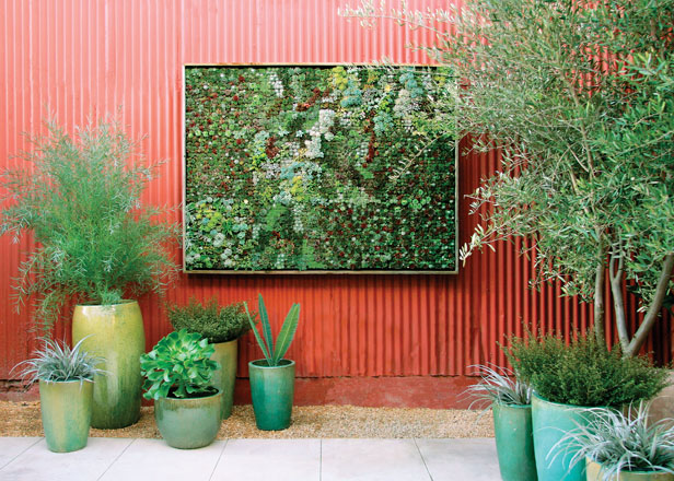 A vertical succulent planting at Flora Grubb Gardens in San Francisco.  Photo: Caitlin Atkinson