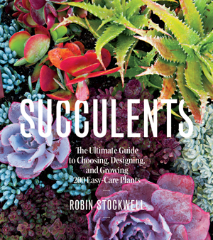 Cover-Succulents_4.11.16
