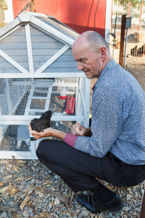 Amusing chickens are are of the lively mix in the gardens at Healdsburg Senior Living Community. Photo: Saxon Holt