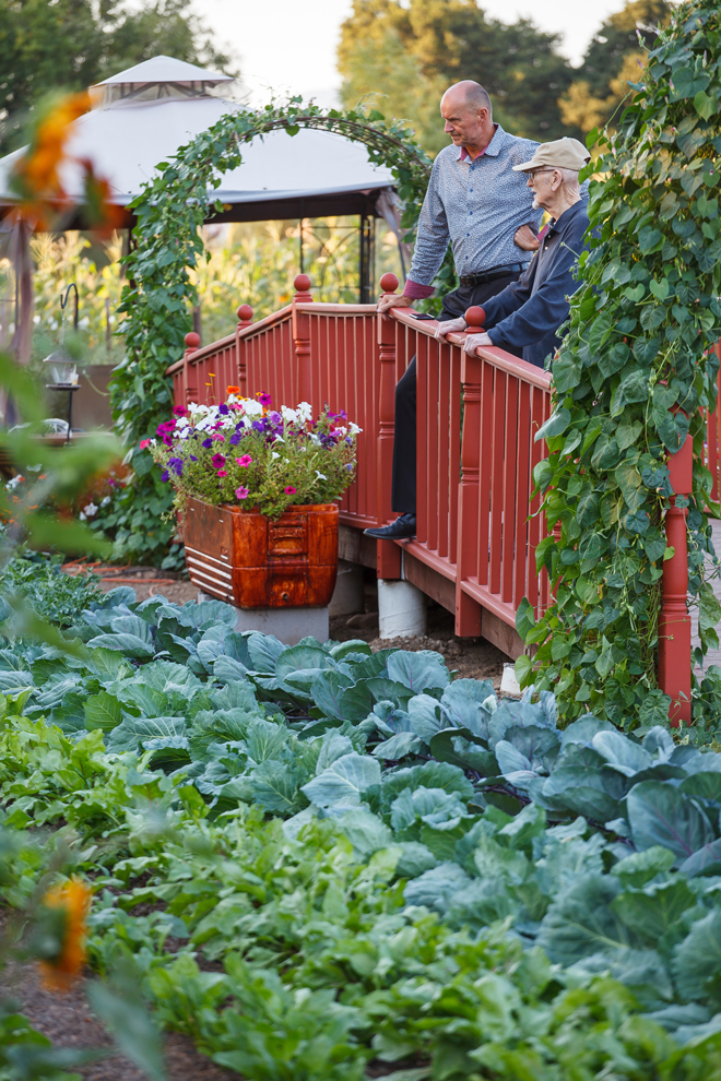 In addition to providing exercise, the ramp offers an elevated view of neat rows of cabbages and beets. Photo: Saxon Holt