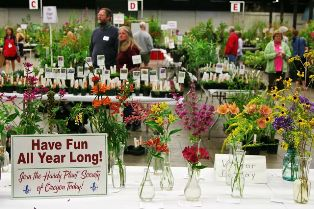 slideshow - plant sale