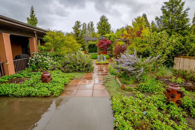 The sensory-rich landscape at Puget Sound Fisher House is both productive and soothing. Photo: Jerry Cahill