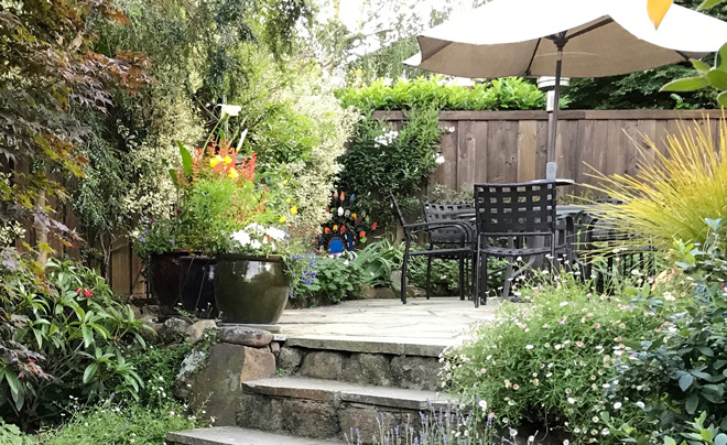 Pacific Horticulture Society | Renovating the Mature Landscape on home space, garage space, living room space, community pool, community work space, art gallery space, cricut design space, community diy space, community park space,