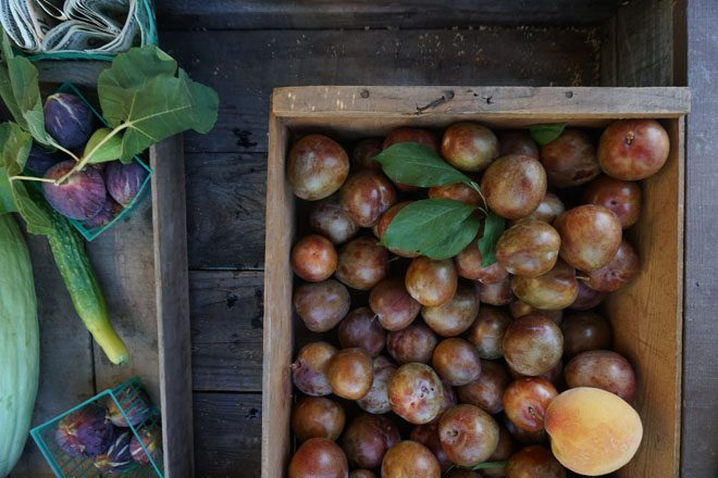 Produce at East Sac Farm is offered for donation or trade. Photo: Melissa Kkeyser