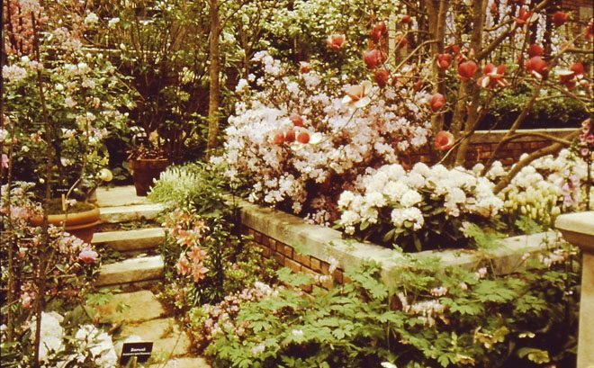 A design's attention to detail in producing an abundant spring in February is on display in this archive photo from the 1990 Northwest Flower & Garden Show. Photo: courtesy of NWF&G Show