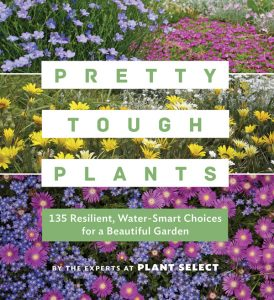 pretty-tough-plants