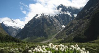Fiordland National Park, New Zealand. Photo: courtesy of Betchart Expeditions.