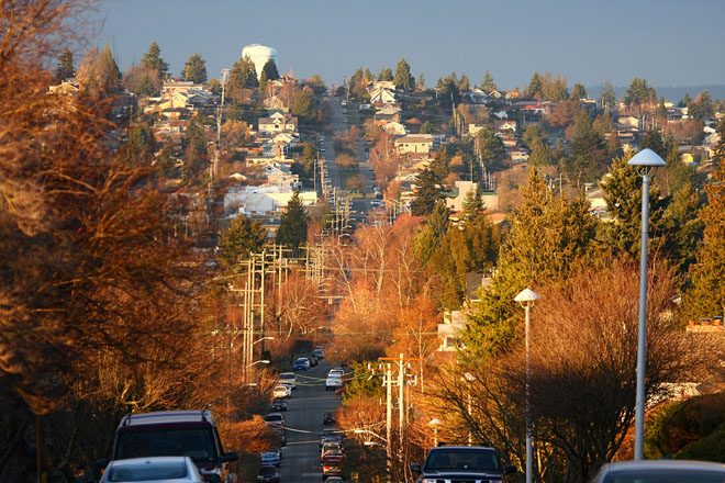 A diverse urban tree canopy in Seattle. Photo: Martin Cathrae via Flickr