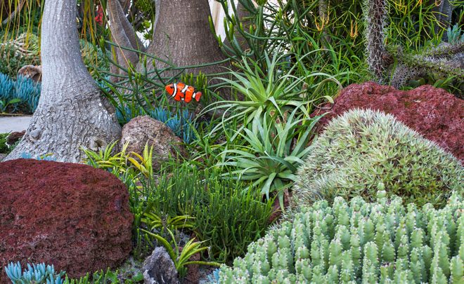 The Undersea Succulent Garden at San Diego Botanic Garden designed by Jeff Moore is planted with water smart succulents to simulate a tropical coral reef, overflowing with marine life. Photo: Saxon Holt