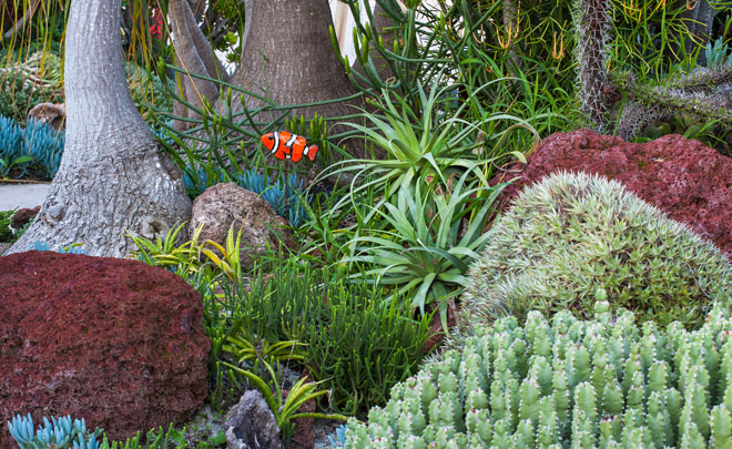 The Undersea Succulent Garden At San Diego Botanic Garden Designed By Jeff  Moore Is Planted With