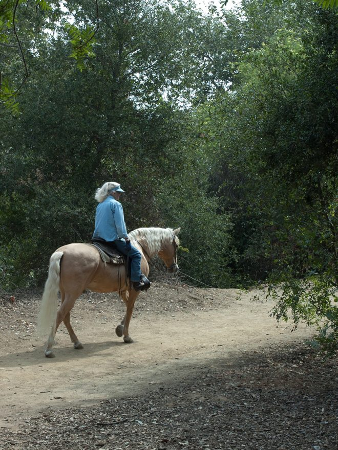 Equestrian trails run through the South Pasadena Arroyo Seco nature park. Photo: Barbara Eisenstein